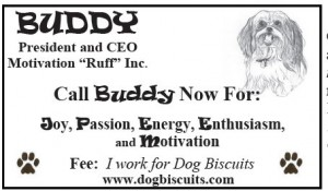 BUDDY'S CARD