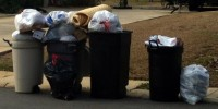 buzz trash pile up
