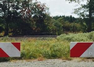 Intermodal track