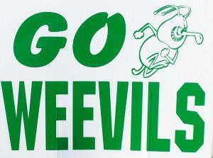 Go  weevils
