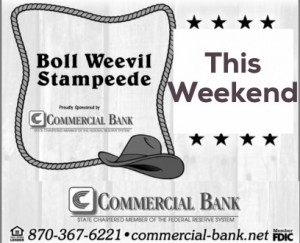 Commercial Bank boll weevil stampede