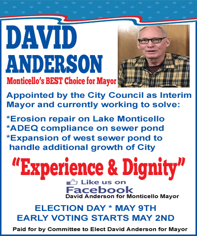 DavidAnderson3 copy
