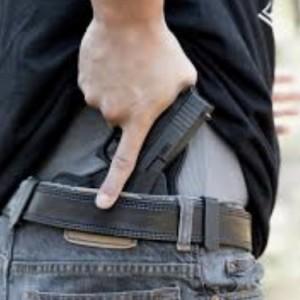 Conceal carry pistol gun
