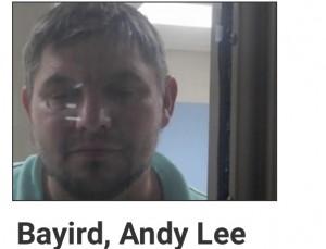 Andy Bayird
