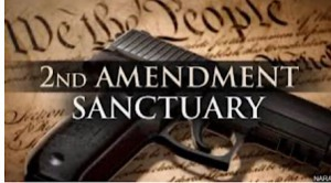 Second 2nd amendment sanctuary city county