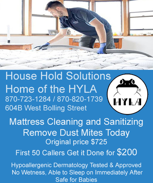 HouseHoldSolutionsMattressCleaning copy