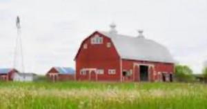 Farm barn tractor