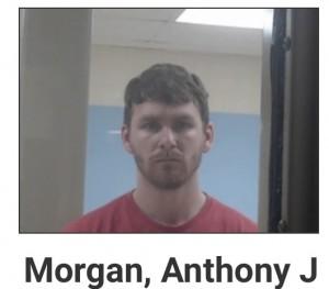Anthony Morgan