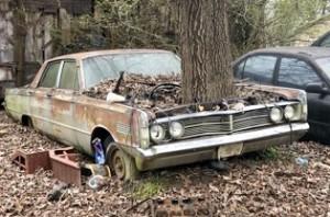 Abandoned vehicle car tree