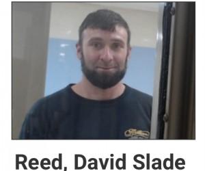 David Slade Reed