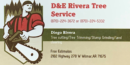 D&E Rivera Tree Service- Storm Damage, Stump Grinding, Tree Trimming, & Land Clearing
